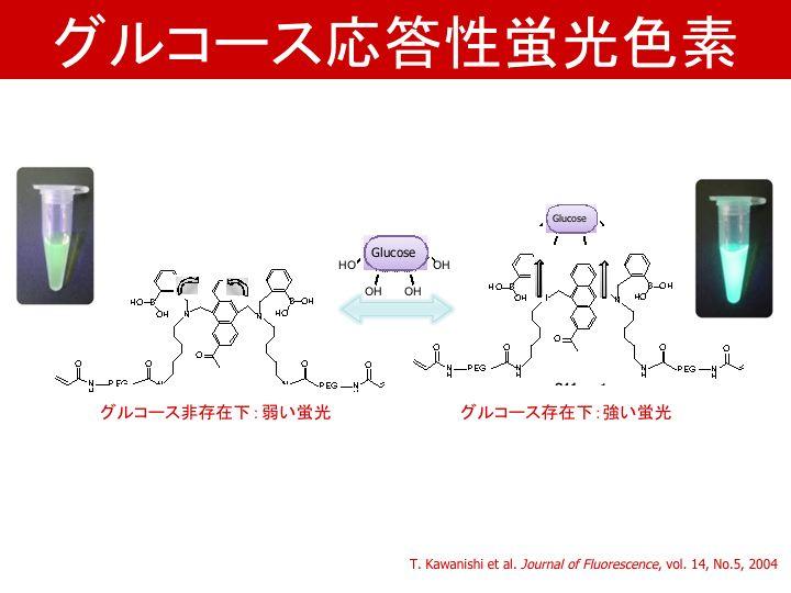 グルコース応対性蛍光色素